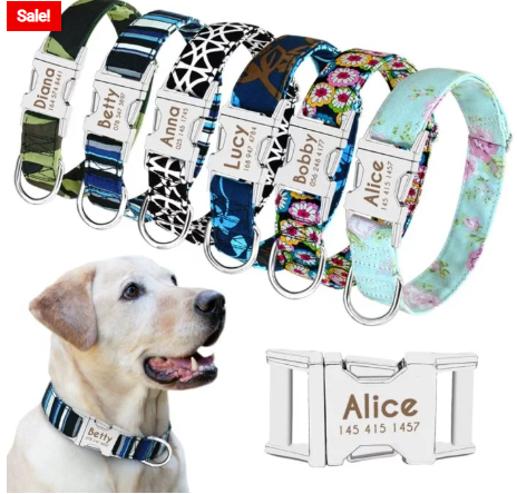 Cool & Fashionable Dogs Accessories For Your Cute Puppies