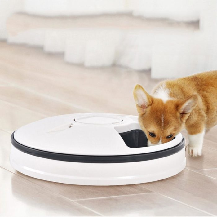 Automatic Feeder Pet Dog Dish