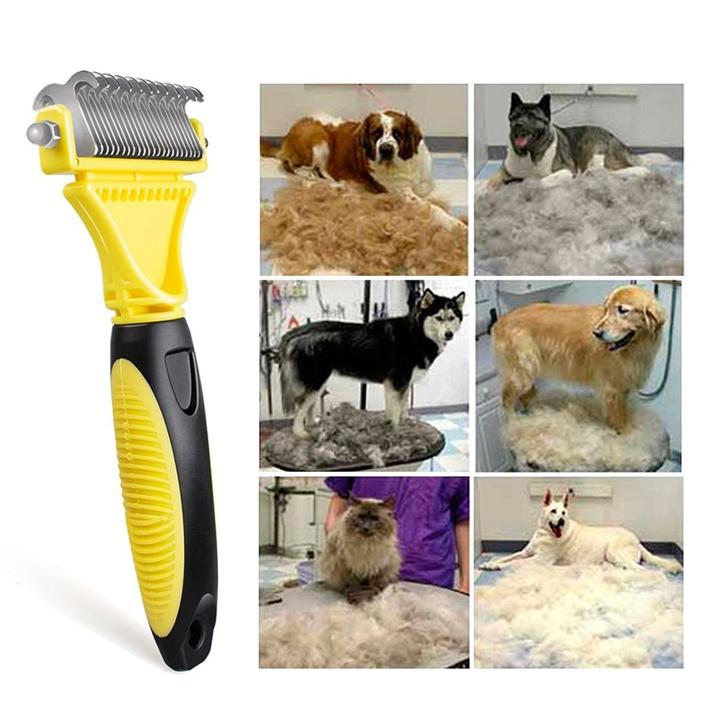 Top 50 Dog Accessories 2019: Know More About Dogs
